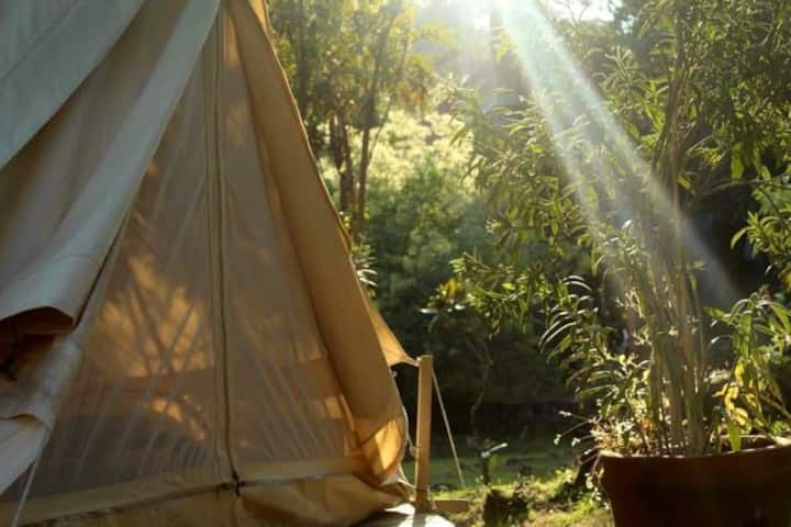 Glamping Boutique Mexico, Casita Nispero!
