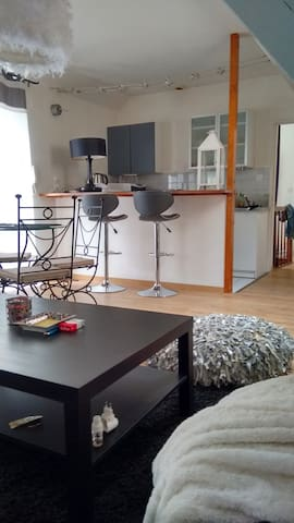 Appartement 55 M2 Centre de Angers au calme - Angers - Appartement
