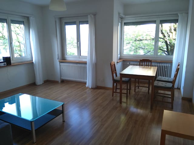 Very bright and comfortable flat in Zürich Seefeld