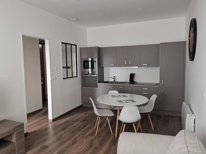 Grenoble appartement 38 m² état neuf une chambre