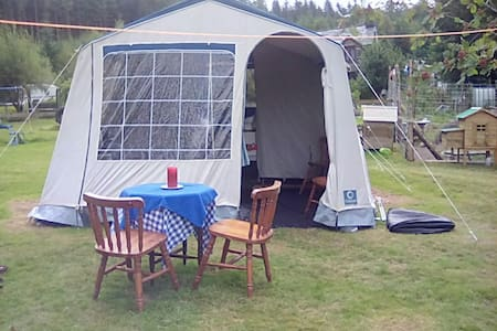 'Ready Tent in the forest! - Llangower - Barraca