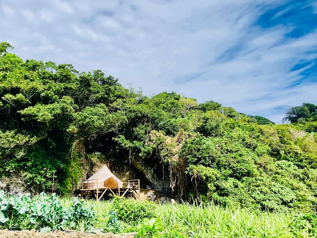 Bell tent in forest with ocean view オーシャンビュー 貸切