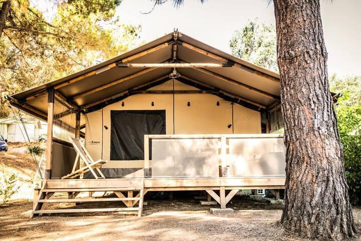 Corsica Lodge 3 Pièces 5 Personnes Climatisé 144787