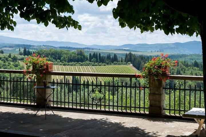 Small villa among roses in the Chianti hills - Greve in Chianti