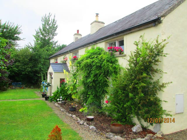 300 year old irish cottage - Limerick