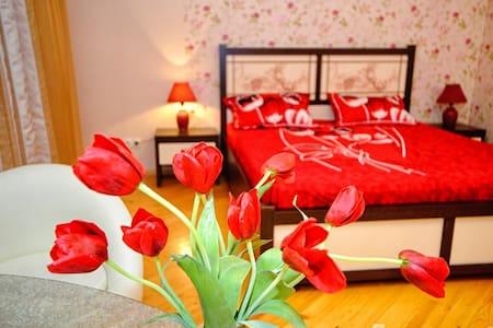 Красивая квартира в новом доме  - Saratov