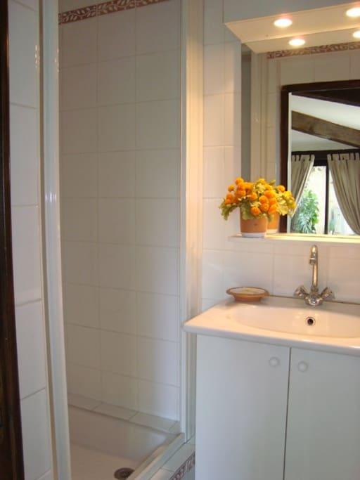 Salle de douche avec toilette