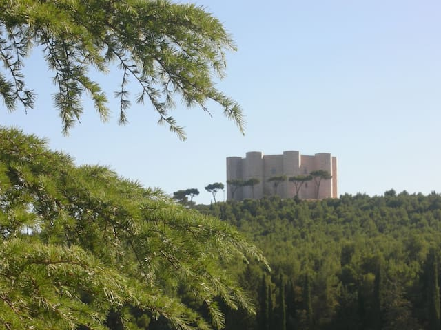B&B Tramonto d'oro Castel del Monte - Andria - Wikt i opierunek