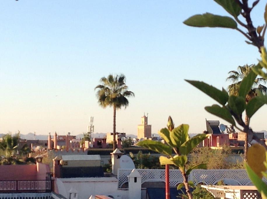 Vue de l'Atlas sur la terrasse panoramique