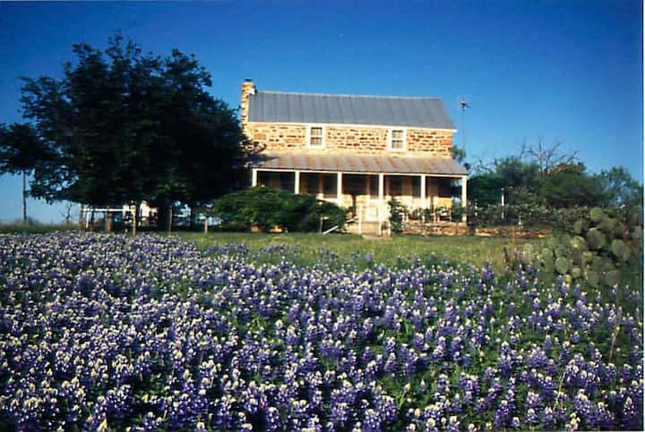 Hill Country 1883 German rock house