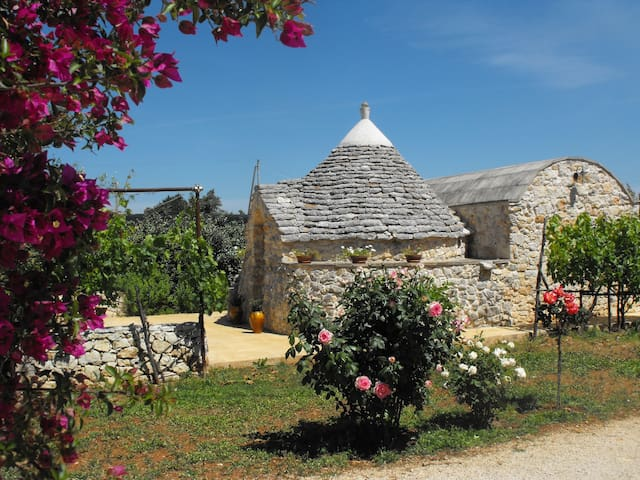 Beautiful Trullo in Salento, Puglia - San Vito dei Normanni