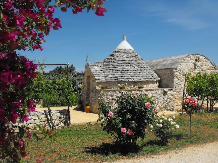 Beautiful Trullo in Salento, Puglia