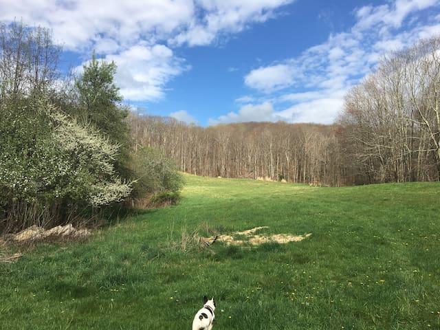 Shawneehaw Outpost RV- hike, bike & dog friendly!