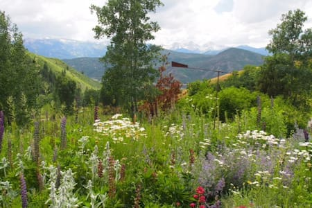 Pristine Cabin near Aspen/Snowmass - Woody Creek