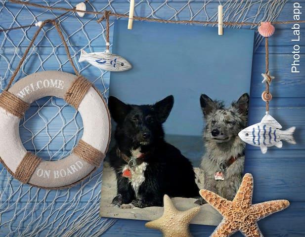 Ferienwohnung Seehund in Nenndorf - Ostfriesland