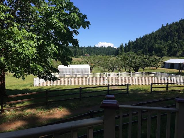 The Pear Farm (Orchard Camp Spot) - White Salmon - Outro