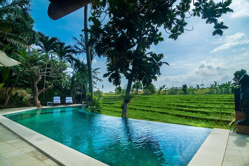 Serene rice field terrace canggu villa 3 bedrooms villas for Terrace 8 residence kuta