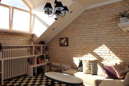 Stylish Studio Apartment | City Centre - Vilna