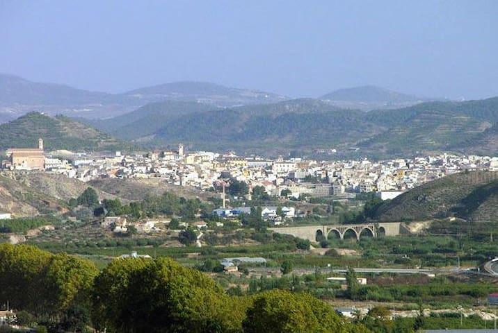 El Lentiscar --rural Spanish heaven - Cehegín - Villa