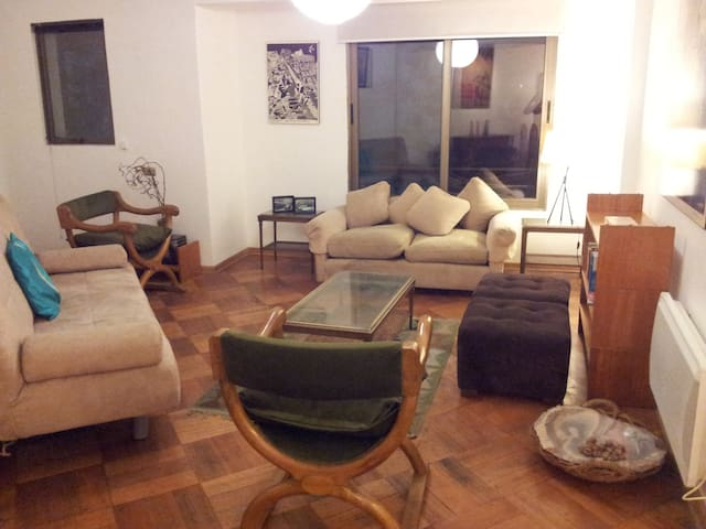Room in shared flat in downtown Santiago