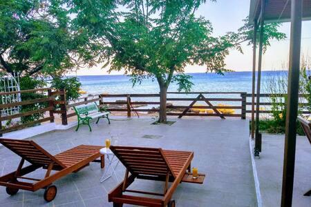 Aegean View (Stegna Beach House)