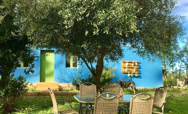 Casa rural Volvoreta. Bosques gallegos!