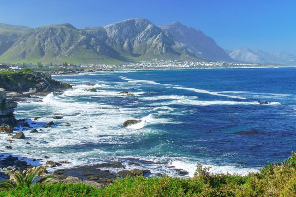 Hermanus - Mountain and see!