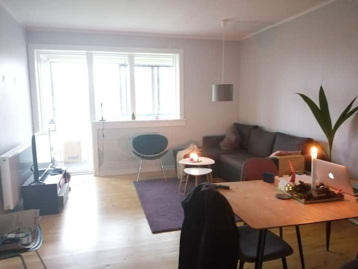 Spacious apartment for an individual or couple