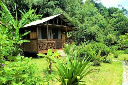 Family-run Lodge - Rainforest in Manu near Cuzco