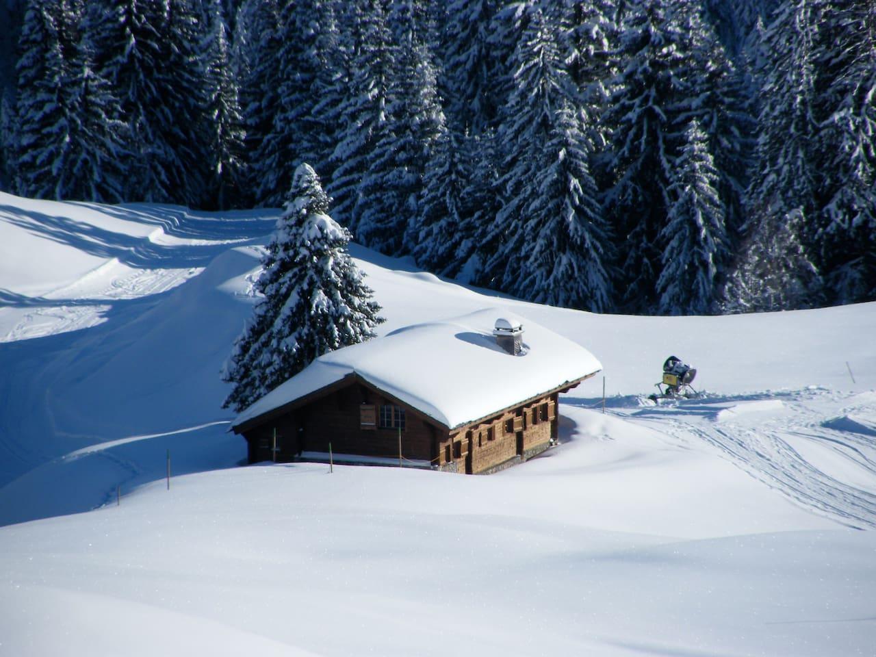 Winter view - 20 meters from ski piste