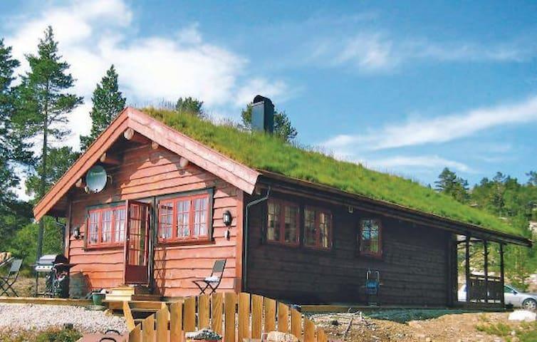 Hillestadheia i Tovdal, Åmli - Dølemo - Kabin