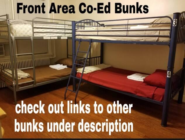 BUDGET BUNK- MIXED - Bottom Bunk #2