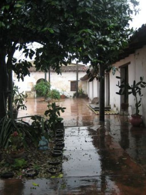 Patio del estudio durante epoca de lluvias (Mayo, junio, julio y parte de Agosto)