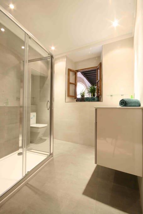 Bathroom, walk-in shower