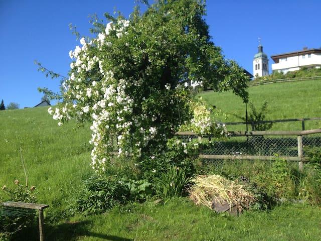 Gartenstudio in Appenzellerhaus - Speicher