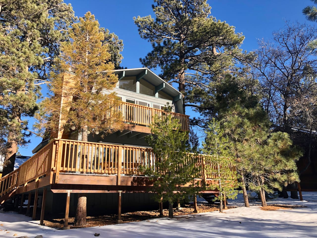 """The view of the cabin from the flat, level driveway. """"It was the best Airbnb I have ever been to!"""" - Nadia, guest"""