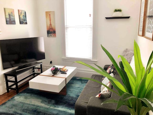 Cozy Edwardian apartment in Mission/Dolores!