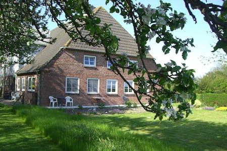 Ehemaliger Bauernhof am Deich - Osterhever - Dom