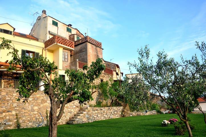 La vecchia casa tra gli ulivi - Diano San Pietro