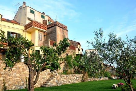 La vecchia casa tra gli ulivi - Diano San Pietro - บ้าน