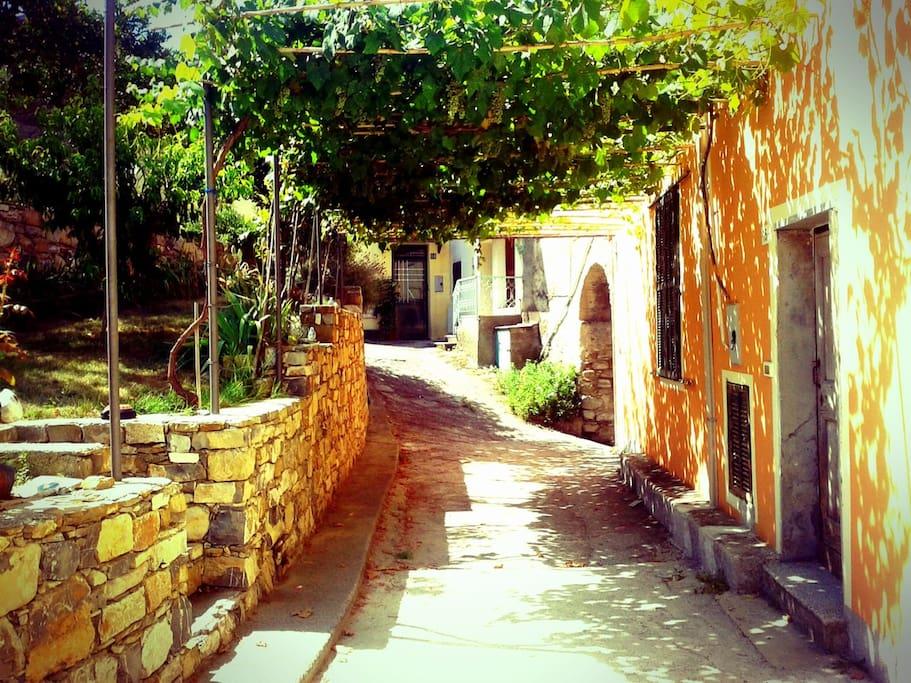 Main entrance from the caruggio
