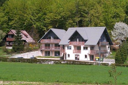 Apartment BOHINJko by Bohinj lake - Ribčev Laz - Apartemen
