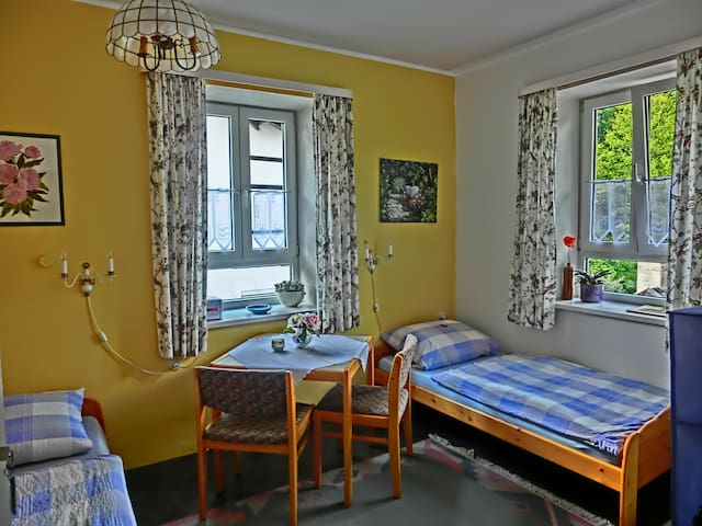 friendly room with space for two - Starnberg - Apartament