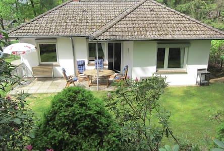 Haus Sonnenschein, direkt am Waldrand, ruhige Lage - Bispingen