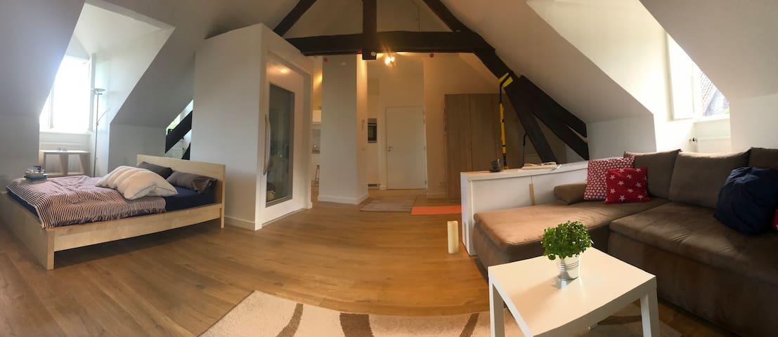 Penthouse Apartement  Maastricht Centre