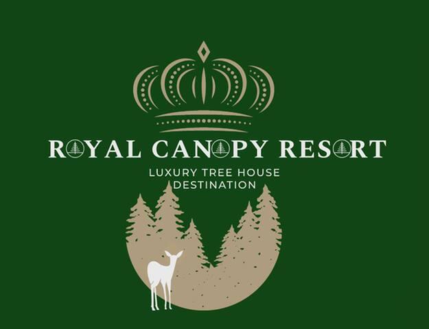 Luxury Tree House Resort on Lake