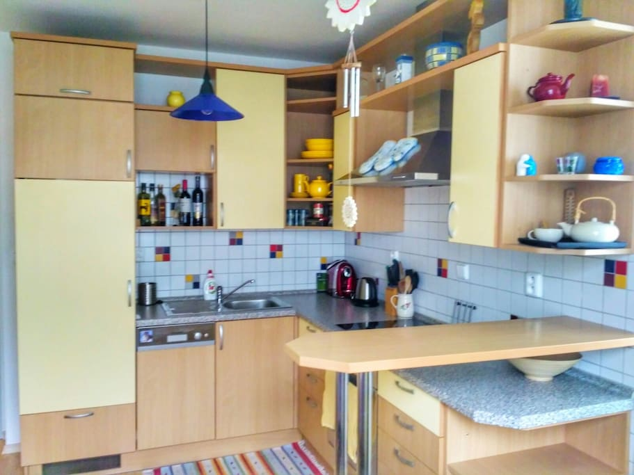 Plně vybavená kuchyň se sklokeramickou deskou, lednicí, mrazákem, troubou a myčkou / Fully equipped kitchen with ceramic hob, fridge, freezer, owen and dishwasher