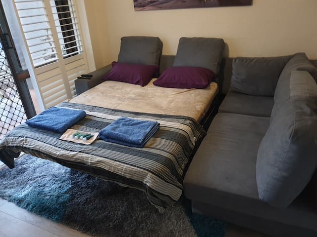 Sofa Bed/Couch Living Area