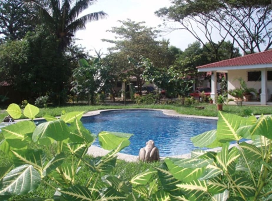The private and peaceful property complete with a refreshing swimming pool. Samara beach is just one minute away by foot!