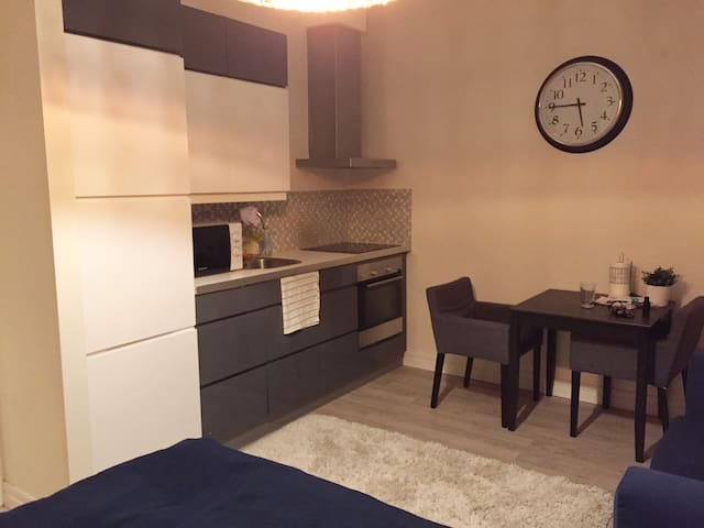 Renovated studio in Frogner, close to city center - Oslo - Lägenhet